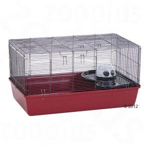 Cage Alaska 80x50