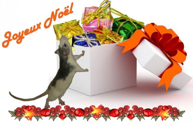 Noel des Rats